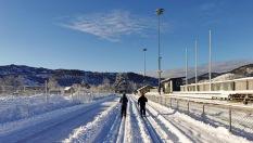 vinter snø Kuventræ ski